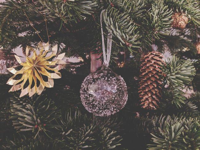 Tree Christmas Decoration Hanging Christmas Celebration Branch christmas tree Close-up