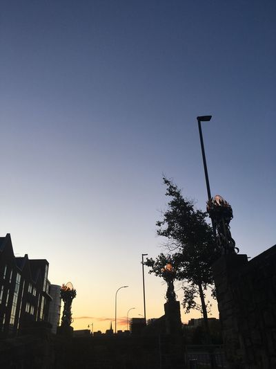 Sunrise Low Angle View Clear Sky Outdoors Sky Building Exterior Changing Colors Streetlamps Nofilter No People