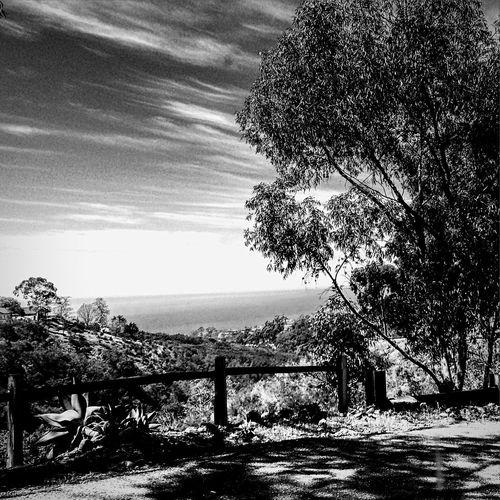 Santa Barbara, CA Enjoying The Sun Clouds And Sky Light And Shadow Blackandwhite