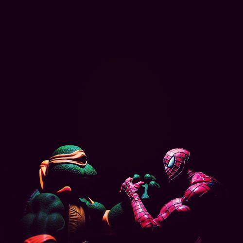 Toy Studio Shot Black Background Spiderman Ninja Turtles Michaelangelo Michelangelo Toys