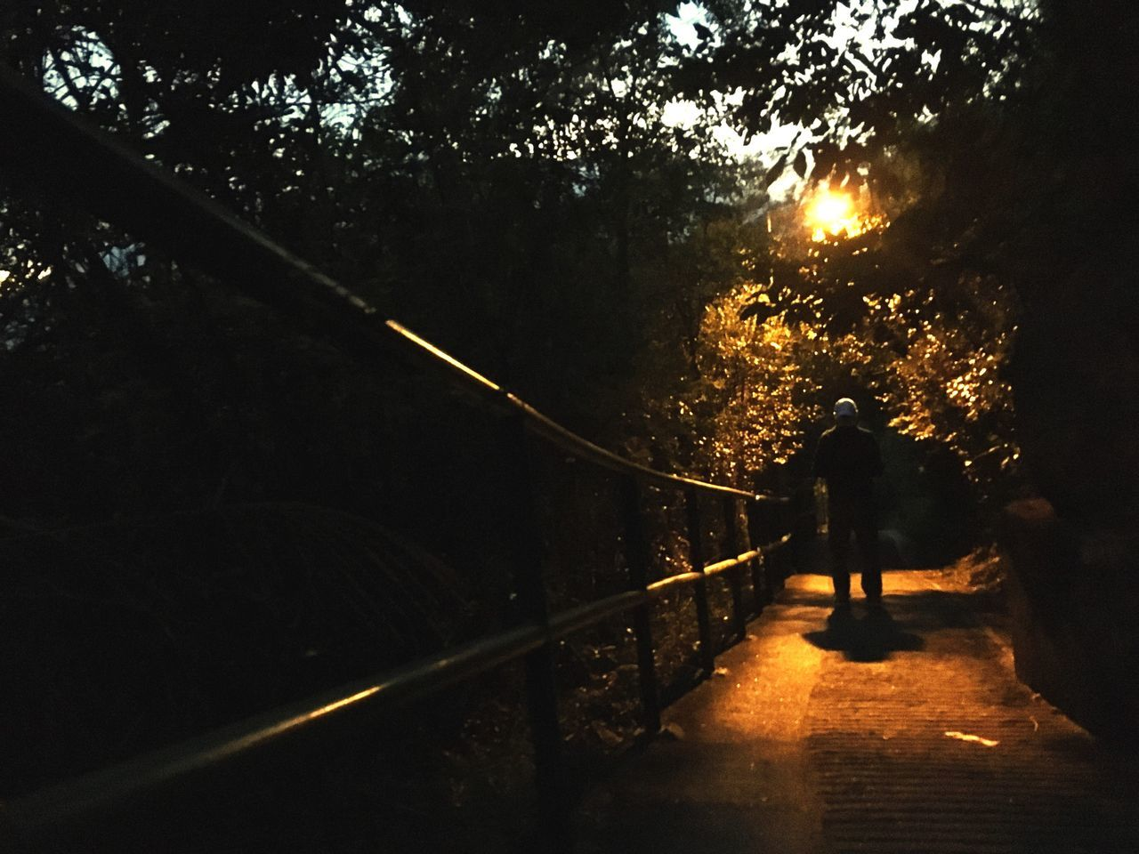 real people, rear view, railing, full length, walking, the way forward, tree, one person, men, silhouette, outdoors, nature, standing, lifestyles, footbridge, night, adult, people