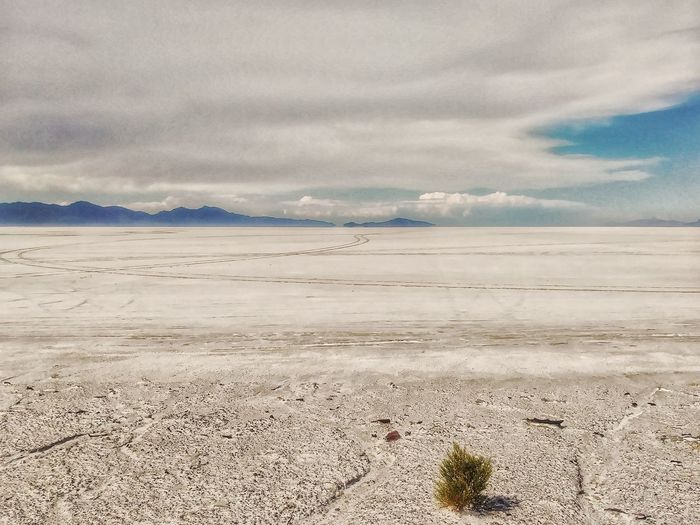 A Salt Lake in