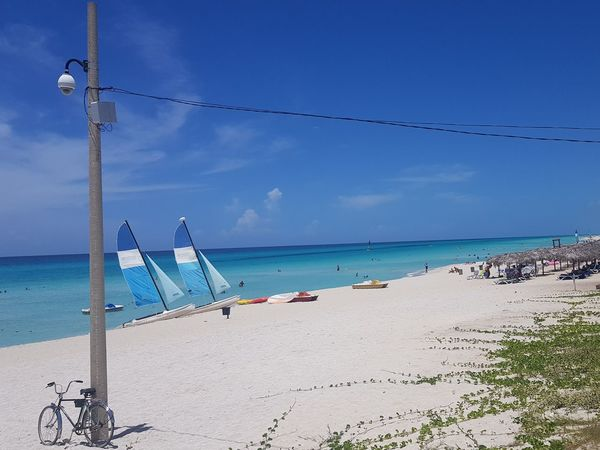 day at the beach Playa Sunlight Karibisches Meer Karibik Catamaran Whitebeach Seascape Sea And Sky Seaside Sea Life Water Nautical Vessel Sea Beach Sand Tree Blue Summer Sea Life Sunny