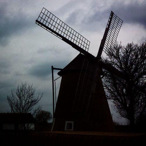 Papi féle szélmalom :) Wind Cloud Nice Hodmezovasarhely Hungary Mill Windmill Tree Beautiful Word Manzardcloud Kellegylumia640