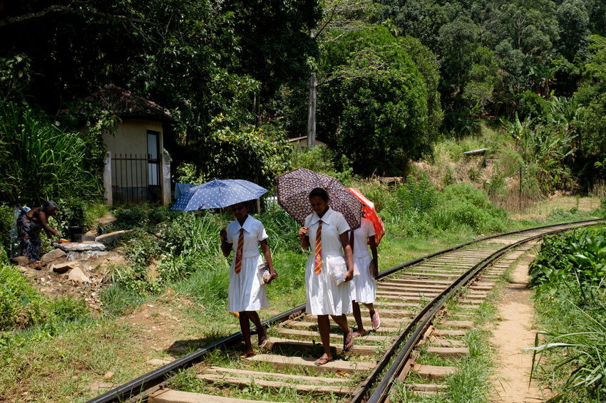Travel in Sri Lanka Adult Adults Only Adventure ASIA Day Enjoying Life Exciting Exploration Explore Full Length Outdoors People Railroad Real People South Asia Sri Lanka Sri Lankan Train Travel Travel Destinations Travel Photography Traveling Tree The Photojournalist - 2017 EyeEm Awards Let's Go. Together. Sommergefühle