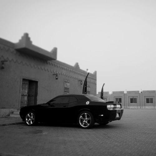 Challenger Dodge American_muscles تشالنجر