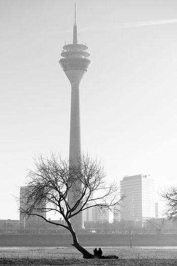 Duesseldorf, Germany Architecture Blackandwhite City Day Duesseldorf Düsseldorf In Love Outdoors Paar Pair Pärchen Resting Rhein Rheinturm  Rheinufer Rheinwiesen Tall - High Tower Tree Two People Lost In The Landscape