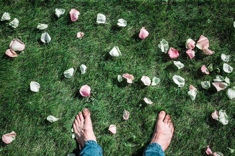 Low section of man standing on grass by flower petal