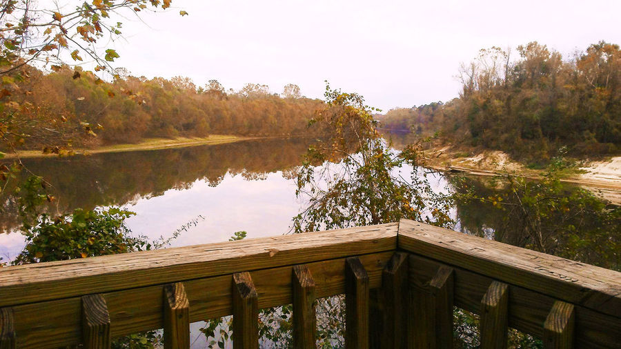 River View Tourist Attraction  Tree Autumn Beauty In Nature Built Structure Leaves Nature No People Outdoors Railing River River And Sky Scenics Tourist Destination Tranquil Scene Tranquility Trees And Nature Water Wood - Material Wood Railings