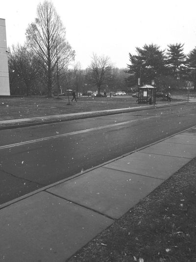 Snowing at school Blackandwhite Blackandwhite Photography Snow College Weather