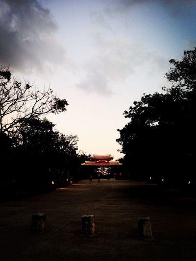 太美了 每當我回到這照片的記憶中 總是久久不能自己 IN 沖縄