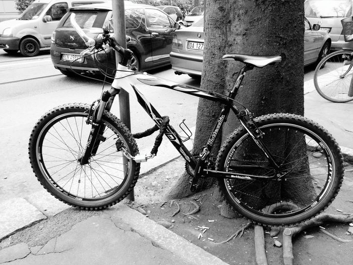 Nexus5photography Nexus5 Mybike La Mia Bici My Bike Lamiabici Blackandwhite Black And White Bianconero Bianco&nero Black & White Black&white Blacknwhite Blackandwhitephotography Black And White Photography Black'n'white  Blackandwhite Photography Bianco E Nero Biancoenero