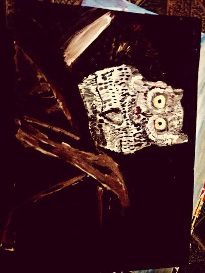 My baby owl. Art Drawing Animals