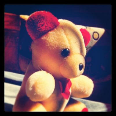 Happy Teddy Day........ with My Teddy.....