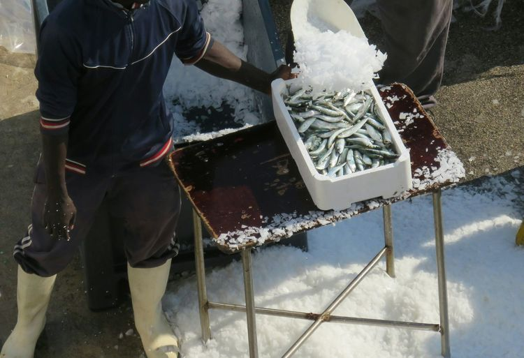 High angle view of fishermen covering fish with ice by machine at harbor