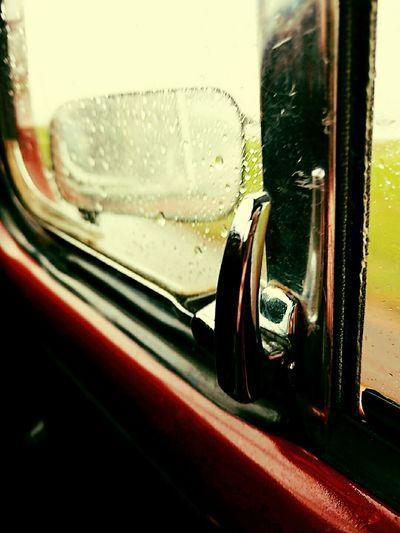 Fusca Beetle Rain Rainy Day