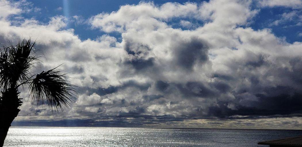 Tree Water Sky Landscape Cloud - Sky Tranquil Scene Tranquility Calm Scenics
