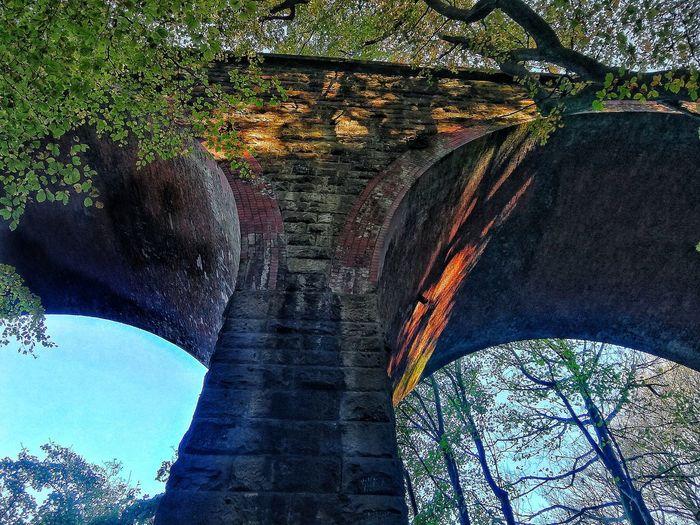 Sunlit Beauty Brick Structure Railway Viaduct Tall Shadows Tree Sunlight