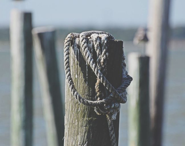 Close-up of rope on wooden post