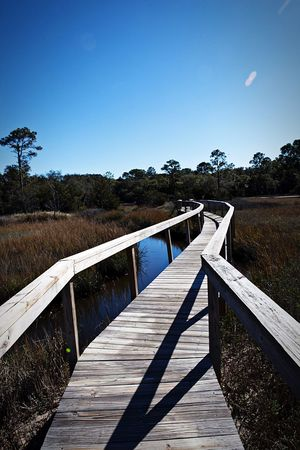 Bridge Walkway Florida Jacksonville Nature Summer Nature Photography The Great Outdoors With Adobe The Essence Of Summer Fine Art Photography Hidden Gems  The Great Outdoors - 2017 EyeEm Awards