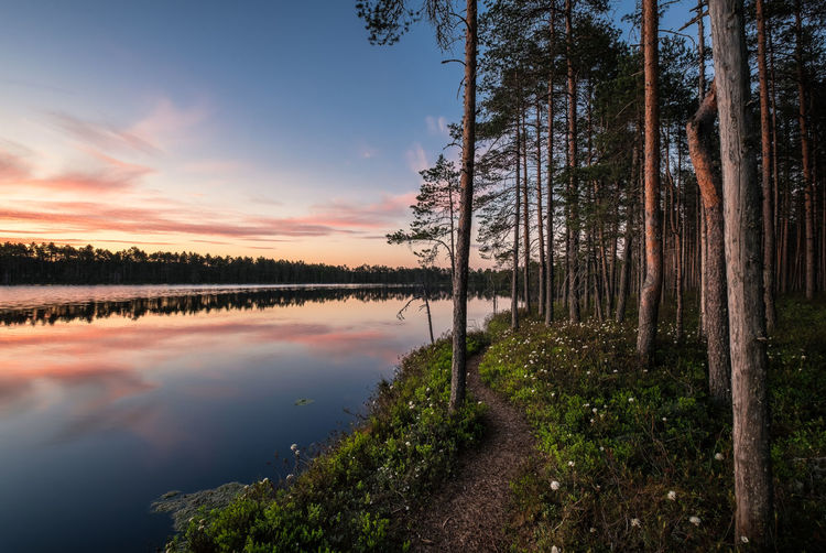 Scenic lake view with idyllic path and sunset at peaceful evening in National Park, Finland Finland National Park Path Reflection Tree Trunk WoodLand Beauty In Nature Cloud - Sky Forest Idyllic Lake Landscape Nature No People Outdoors Pathway Plant Reflection Scenics - Nature Sunset Trail Tranquil Scene Tranquility Tree Water The Great Outdoors - 2018 EyeEm Awards