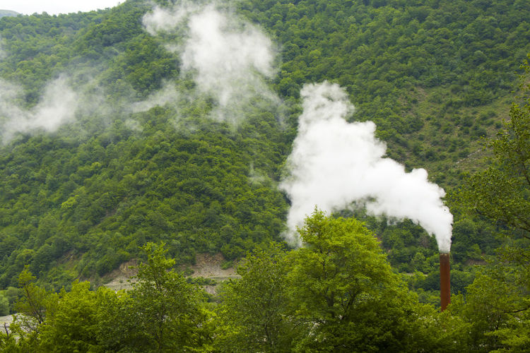 Industrial pollution, smog and fog, large smoke pipe, toxic air. clouds with pollution and forest