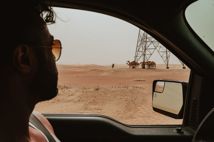 Desert Camel Camels Car Car Interior Day Fashion Glass - Material Glasses Headshot Land Land Vehicle Lifestyles Mode Of Transportation Motor Vehicle Nature One Person Outdoors Real People Road Trip Sky Transparent Transportation Travel Vehicle Interior Summer Road Tripping