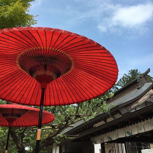 茶屋 Japan Low Angle View Cultures Red Tradition Sky Cloud - Sky Outdoors No People
