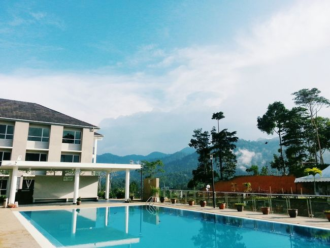 Weekend Retreat on the top of the hills, between the rainforest. Perfect view & weather. Serenity.