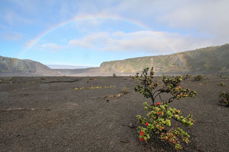 Plants And FlowerseClouds And SkydSky And CloudseHawaiianaRainbowsaRainbowskytRainbowpornpCrater LakepCratersnKilauearVolcanoesand sky Sky and ClouRainbowiCrateriKilauea VolcanoyVolcanowHawaiirHawaiilifecRainbow SkyuCraterlakees