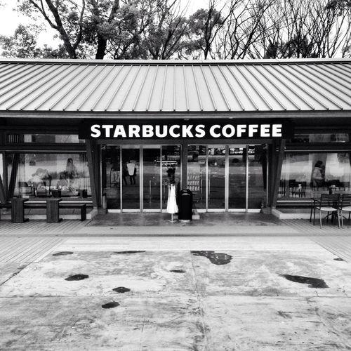 Starbucks Taitouku