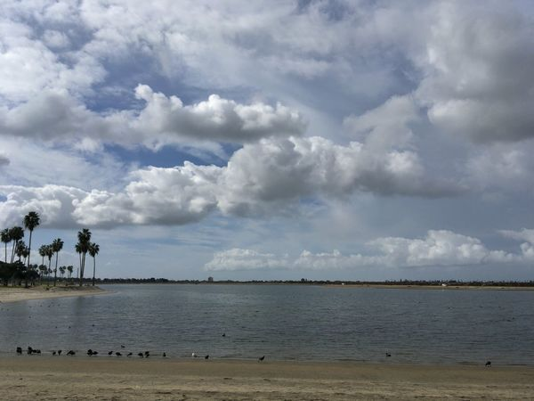 Mission Bay - San Diego, United States 2016 Beach Beauty In Nature Cloud - Sky Day Horizon Over Water Landscape Nature No People Outdoors Scenics Sea Sky Storm Cloud Tranquil Scene Tranquility Tree Water