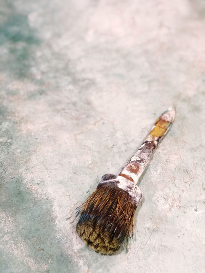 High angle view of paintbrushes on ground