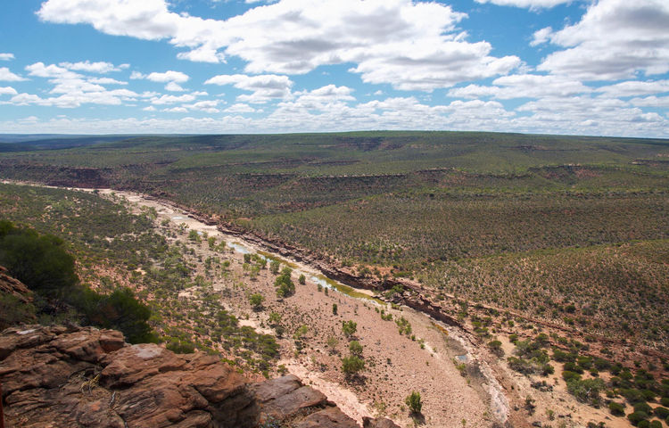 Elevated view from the Ross Graham Lookout over the dried out Murchison River gorge in the Kalbarri National Park in Western Australia. Bushland Cliff Cloud - Sky Drought Dry Elevated View Gorge Hills Kalbarri Landscape Murchison River Nature Nature Reserve Plants Ravine Rock Rolling Ross Graham Lookout Rural Scene Sand Sandstone Scenics Travel Destinations Vv Western Australia