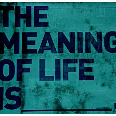 What is the meaning of life?? ?:-/