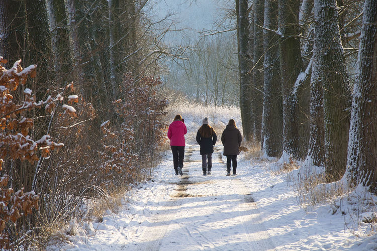 Rear view of people walking on snow covered footpath