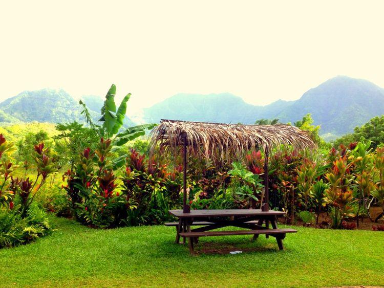 Pure Hawai'i awesomeness