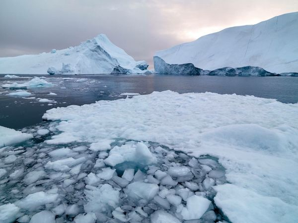 Glaciers in Greenland icefiord Ice Icecap Greenland Ilulissat Nature Landscape Glaciers