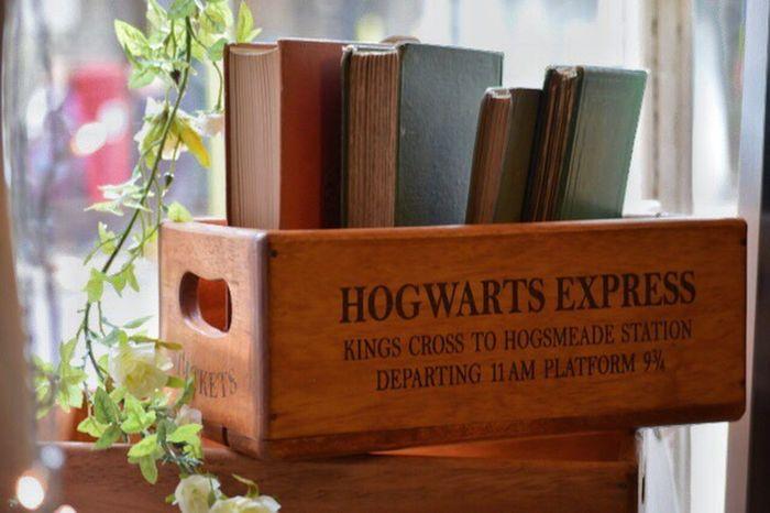 Plant Leaf Home Interior Nature Harry Potter Harrypotter Hogwarts Hogwarts Express Box Shop Vintage Charity