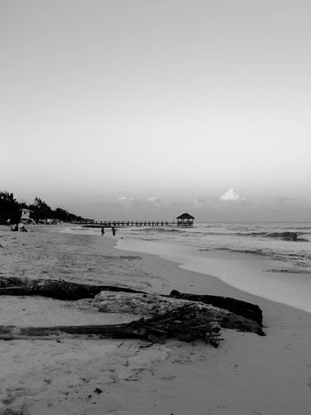 Beach Rocks Beach Beauty In Nature Black And White Day Nature No People Ocean Outdoors Portrait Scenics Sky