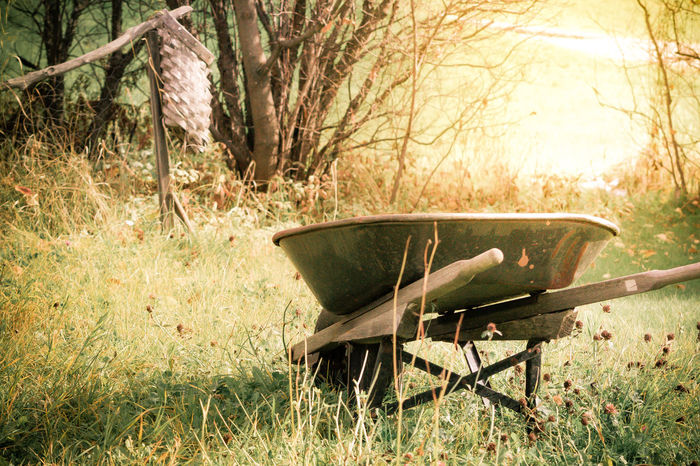 Abandoned Absence Clover Deserted Empty Feedbag Field Field Garden Garden Photography Grass Grass Green No People Old Rusty Showcase March Sunlight The Essence of Summer Tranquility Tree Vintage Wheelbarrow Wood - Material Worn