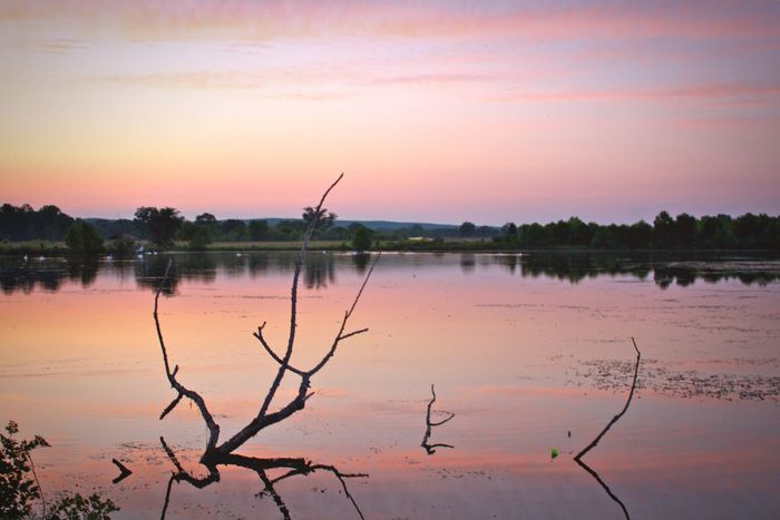 Day of fishing comes to a close. Water Reflection Sunset Nature Tranquility Scenics Sky Lake No People Outdoors Beauty In Nature Tranquil Scene Waterfront Landscape Day Lost In The Landscape