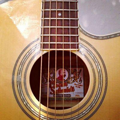 My guitar, Oscar Schmidt by Wasburn.
