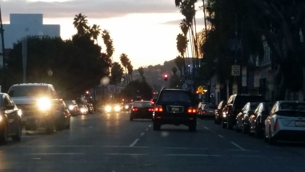 Palm Trees No People Sunset Blvd Hollywood Driving Clouds And Sky City Street Tail Light Vehicle Light