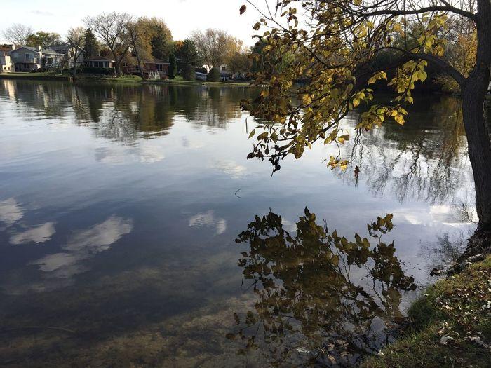 Lake Lake View Lakeshore Lakeside Reflection Water Reflections