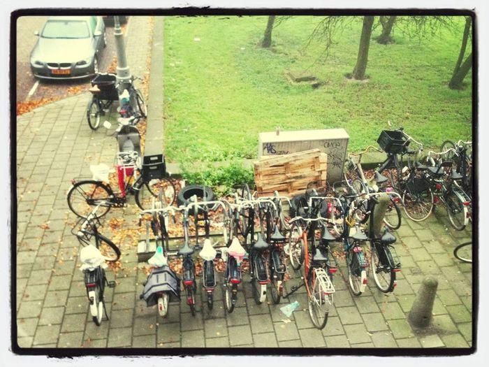 Morning Amsterdam!