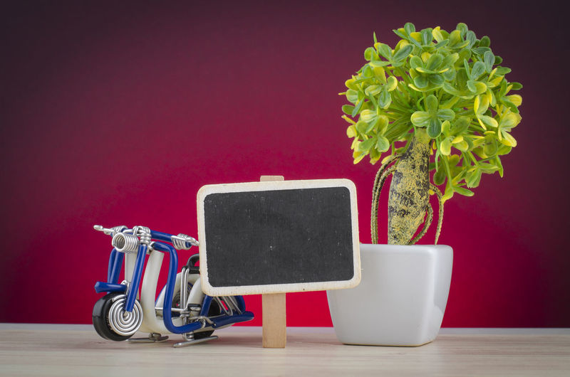 travel concept, miniature handcrafted scooter on wooden desk shot over lighting effect Indoors  Plant Nature Flower No People Studio Shot Vase Flowering Plant Still Life Potted Plant Table Growth Wall - Building Feature Colored Background Beauty In Nature Green Color Copy Space Close-up Red