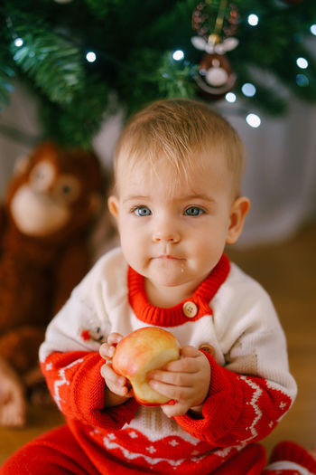 Portrait of cute baby girl eating apple against christmas tree at home