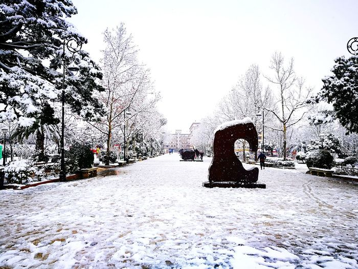 Snowy walk Snow ❄ Snow Snowy Cold Temperature Cold Cool Walk Relaxing Ice Kids Play Having Fun Smile Nature Snowy Trees Day Outdoors Nature Sky No People