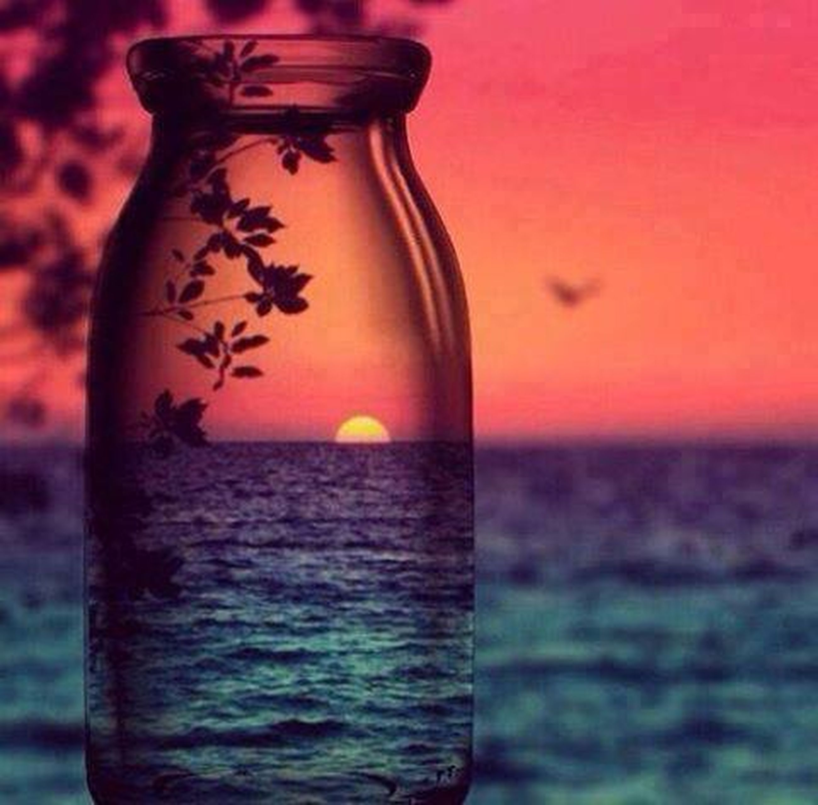 water, sea, sunset, close-up, focus on foreground, orange color, waterfront, single object, red, horizon over water, reflection, rippled, nature, no people, beauty in nature, tranquility, refreshment, drink, outdoors, scenics